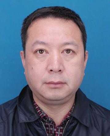 副会长 谭智华